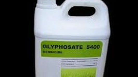 Safety of Glyphosate Weedkiller