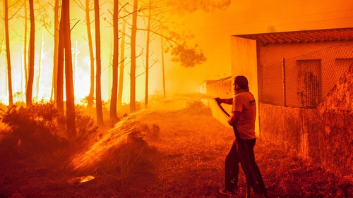 A man fights with a forest fire in Vieira de Leiria, Marinha Grande, in central Portugal