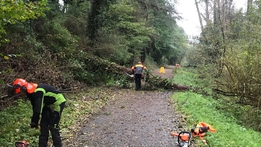 Concerns Ophelia clean-up could be hit by more bad weather | RTÉ News