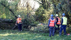 ESB crews cutting fallen trees in Birr, Co Offaly