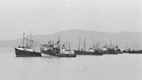 Trawlers blockading Dublin Port, during a fishermen's protest (1982)