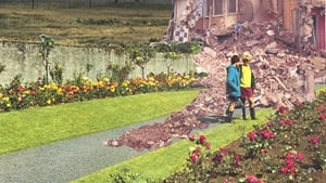 Sean Hillen - detail from Evidence of Controlled Demolition in the Rose Garden, Tralee, Co Kerry (2007)