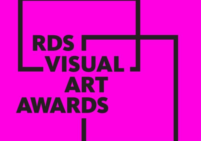 RDS Visual Art Awards 2017