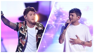 One Direction's Niall Horan and Louis Tomlinson had a playful fight on Twitter, much to the delight of their fans