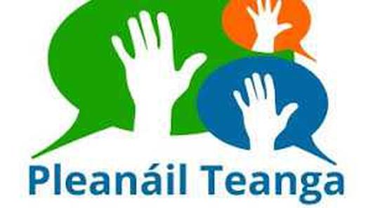 Bearnaí Ó Gallchóir, Cathaoirleach, Coiste Pleanála Teanga Chloich Cheannfhaola.