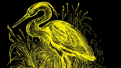 Detail from the beautiful cover image on Tramp Press's reissued edition of Dorothy Macardle's The Unforeseen