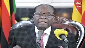 Robert Mugabe is being blamed for the 'unprecedented economic tailspin' in Zimbabwe for the last 15 years