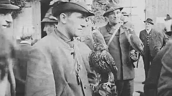 Falconry in 1962