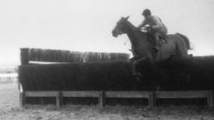 Arkle's 1964 Gold Cup triumph was one highlight of a sepia-tinted era in Irish sport