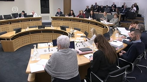 The Joint Oireachtas Committee on the Eighth Amendment heard from a witness that the medical prognosis can be wrong
