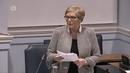 Tánaiste Frances Fitzgerald adressing the Seanad