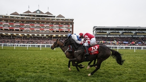 Total Recall (red) looks more likely to go in the Grand National than Cheltenham Gold Cup