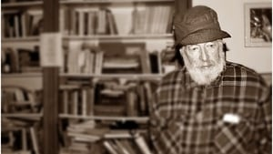 """In giving us Sebastian Dangerfield and The Ginger Man, Donleavy gave us both one of the great literary characters and one of the great Dublin novels"""