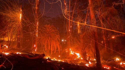 'Monster' Thomas fire in Southern California now 50 percent contained