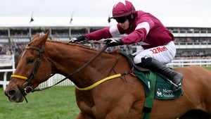 Road To Respect goes in the Cheltenham Gold Cup