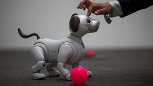 The Sony robotic mutt is yet to be given a release date