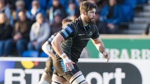 Peterson has Leinster in his sights