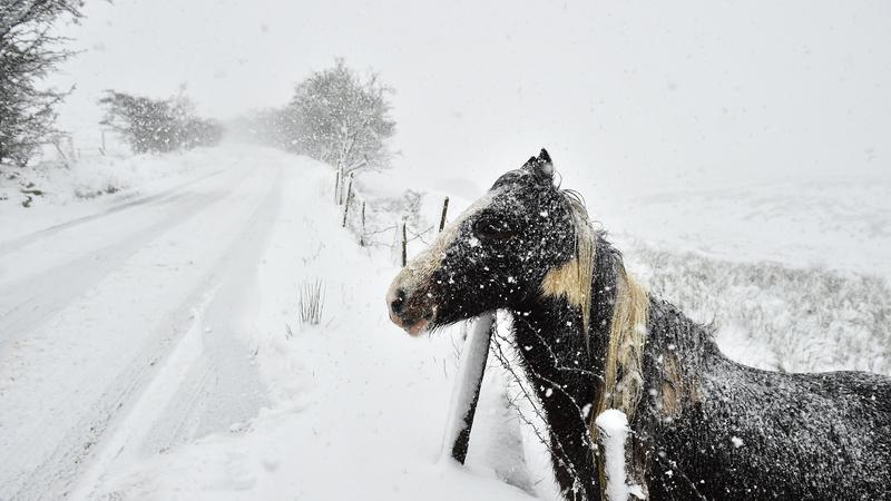 Extreme cold weather advisory