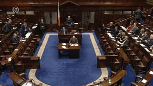 The majority of speakers in both the Dáil and the Seanad were in favour of repealing the amendment