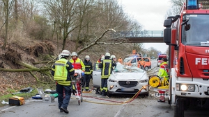 Firefighters rescue the driver of this car after a tree fell on it near Moers, western Germany