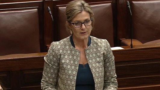 Fine Gael TD criticised in Seanad over swing lawsuit