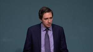 Minister for Health Simon Harris said many of Fine Gael's ministers, TDs and councillors would be supporting the campaign
