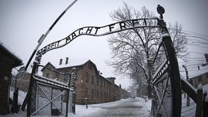 Jews from across Europe were sent to be killed at death camps built and operated by Nazis in Poland