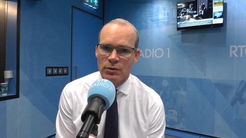 Simon Coveney said the State's number one priority must be to protect women in pregnancy