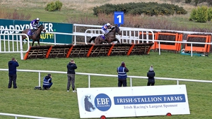 Alletrix goes in the Quevega Mares Hurdle at Punchestown