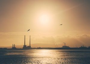 Finalist: Oisin Callan, Dublin Port