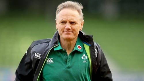 Joe Schmidt will step down from his position as Ireland head coach after the World Cup