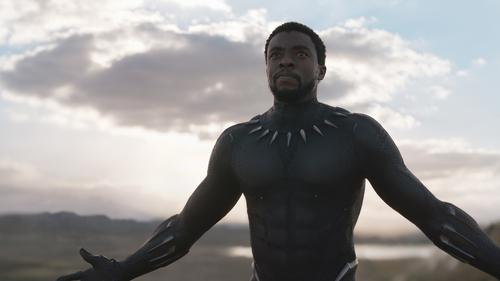 Chadwick Boseman is back as T'Challa/Black Panther