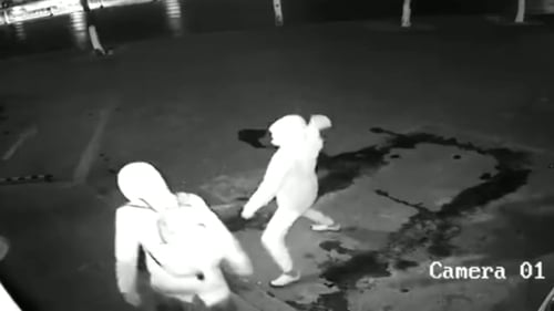 WATCH amusing moment burglar knocks out accomplice