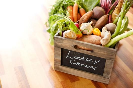 Is Organic Farming the future?