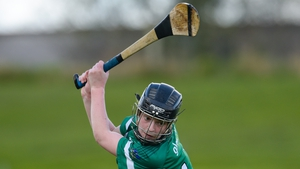 Niamh Mulcahy fired over nine points for Limerick