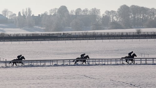Both Clonmel and Dundalk meetings have fallen victim to the weather (file photo)
