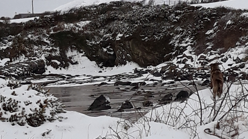 Snow in Linsfort, Co Donegal, yesterday