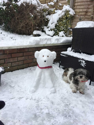 New snow friends in Carrigaline, Cork - From Susan and Aisleigh O'Donovan