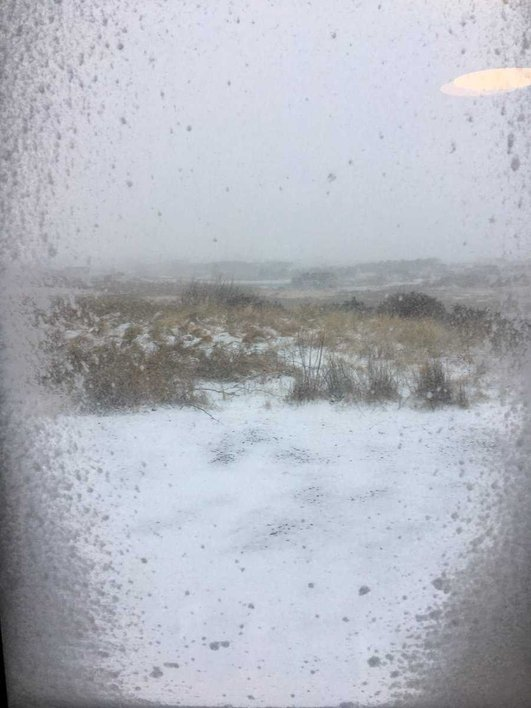 Snow causing difficutly for farmers