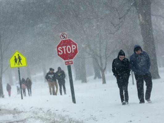 Snow Calls