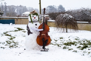 Cello time in Charleville. By Susie Butler
