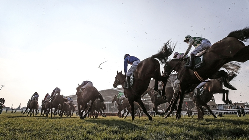The Cheltenham festival takes place this week.