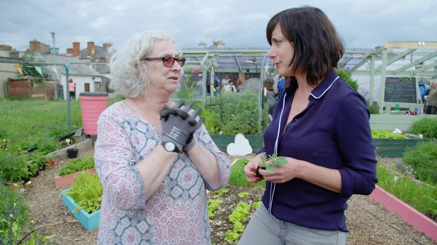 Karen-ODonohoe-chats-to-Maeve-Foreman-secretary-of-the-Mud-Island-Community-Garden