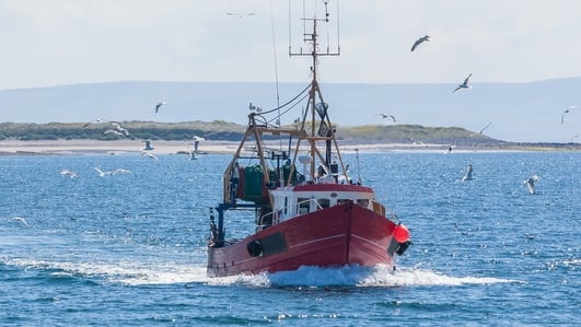 """60 percent of our exports of seafood go to continental Europe"""
