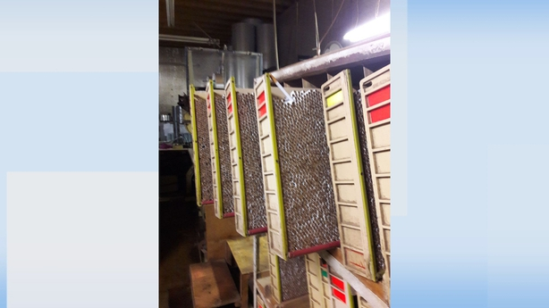 Gardai arrest 11 people after discovery of illegal cigarette factory