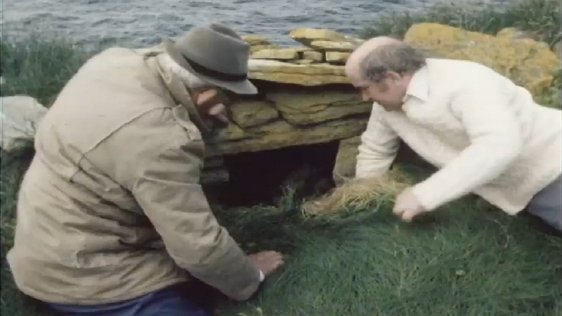 Medieval Mayo Builders And Farmers