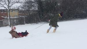 Snow sledging in Killiney, Co Dublin