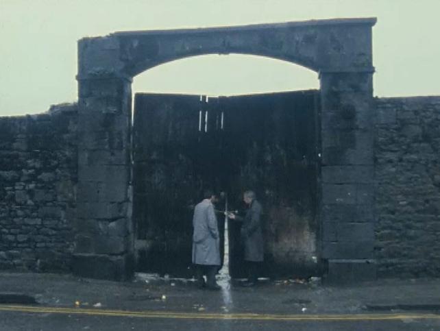 Limerick Market (1988)