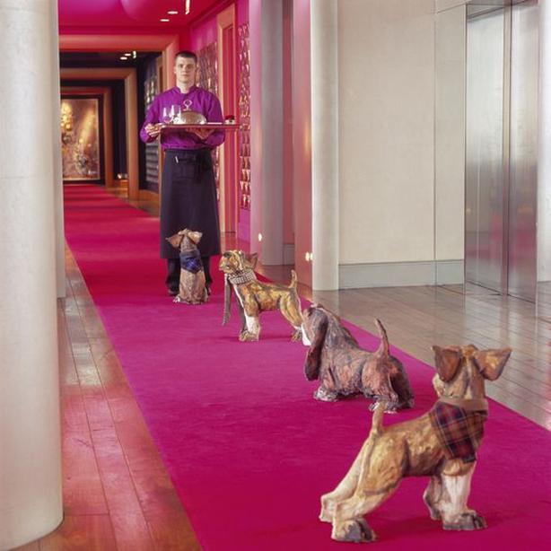 g hotel decor dogs