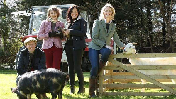 This year,it's the turn of farmer Gillian O'Sullivan to host RTÉ's award-winning farm show